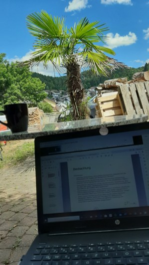 Sometimes I sat outside while I participated in online lectures.