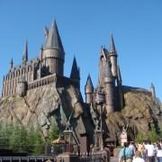 Muggles Get Magical