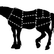 The Truth Behind The Law Legalizing Horse Slaughter