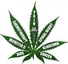 cure leaf