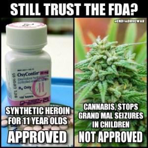 oxy-versus-marijuana
