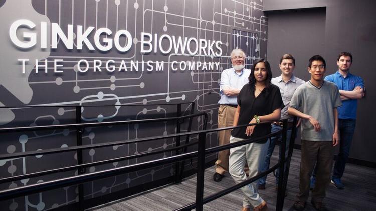 """Wer ist """"Ginkgo BioWorks"""" und wie passen sie in die Agenda der Biosicherheit und des Transhumanismus?"""