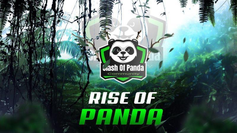 The Panda Rebirth: comunicazione di servizio dalla Panda Community!
