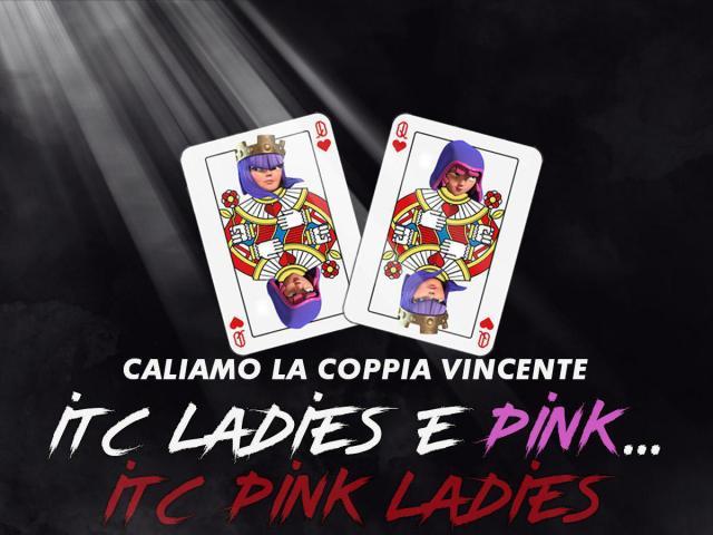 photo 2019 05 11 20 54 54 2 1024x768 - Ecco le ITC Pink Ladies: nate da una fusione e pronte a stupirvi!
