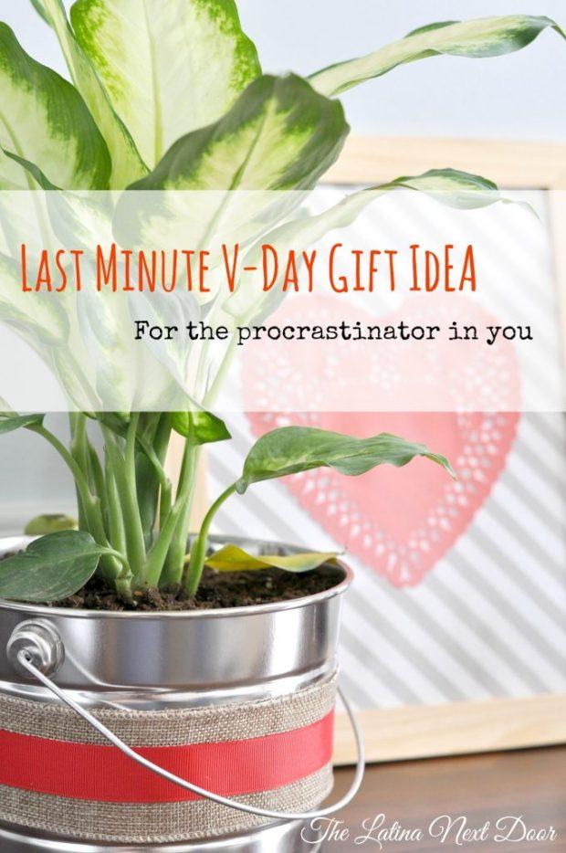 Last Minute Valentines Day Gift Idea 680x1024 Last Minute Valentines Day Gift Idea