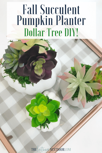 DIY Dollar Tree Fall Succulent Pumpkin Planter
