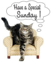 special sunday