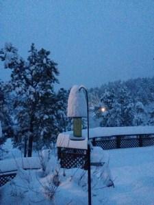 snowy birdfeeder
