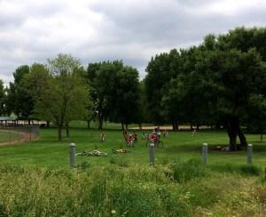 kids biking in field