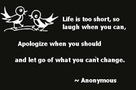 Apologize when you should