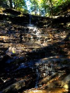 boardtree falls