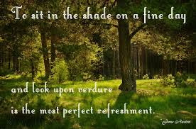 nature is the perfect refreshment