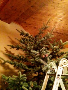 topless christmas tree