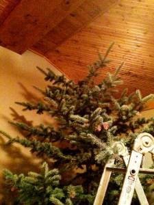 topless christmas tree