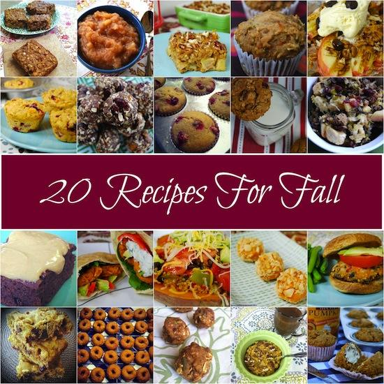 Do you love all the flavors of Fall like apple, cranberry, sweet potato and pumpkin? Here are 20 recipes to try!