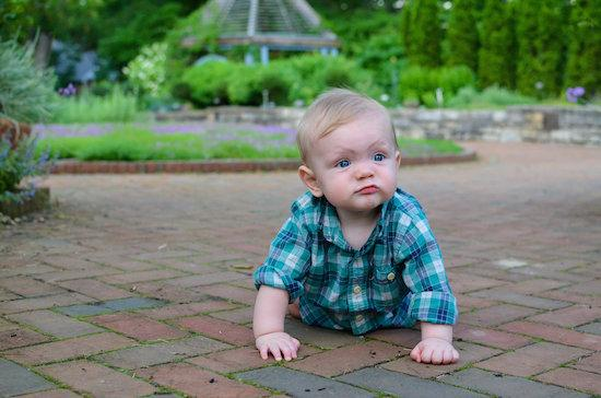 baby 8 months