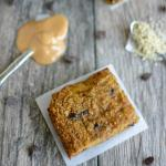 gluten free pumpkin yogurt bars 1 copy
