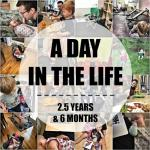 A Day in the Life – 2.5 Years + 6 Months