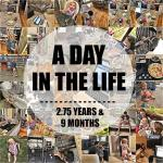 A Day In The Life – 2.75 Years + 9 Months
