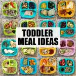 Toddler Meal Ideas