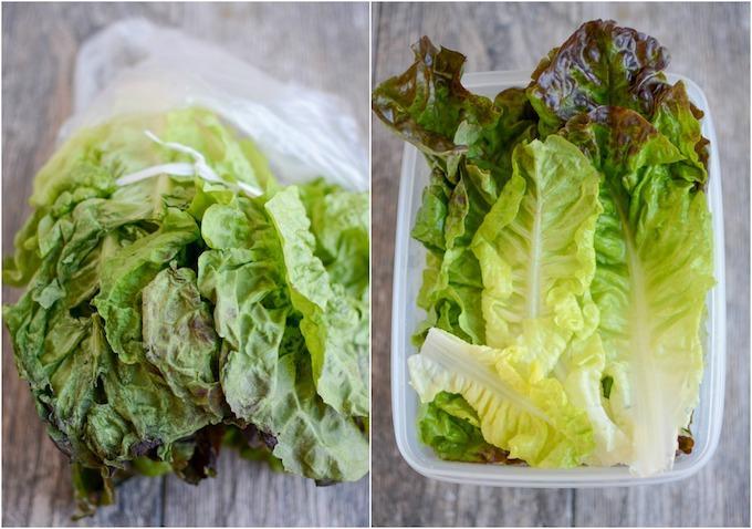lettuce in plastic bag vs freshworks container