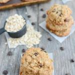 Dairy Free Lactation Cookies 1
