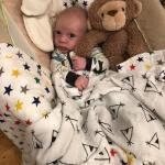 Life Lately – Six Weeks Old