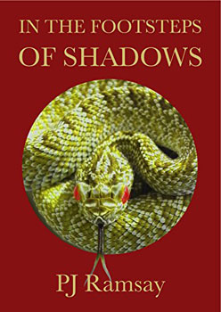 In the Footsteps of Shadows by PJ Ramsay