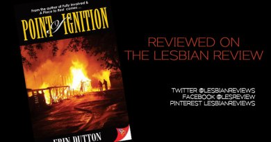 Point Of Ignition by Erin Dutton