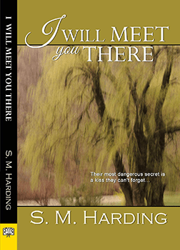 I Will Meet You There by S M Harding