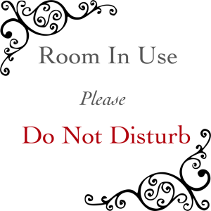 Room In Use