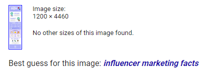 google image search result for influencer marketing facts and statistics infographic