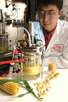 corn-scientist-140