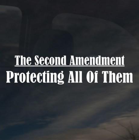 Second-Amendment01[1]