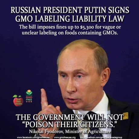 Putin-says-No-GMO