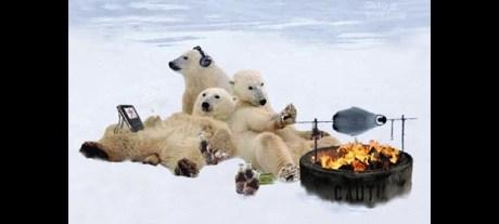 Bears on ice BBQ slide show 620 x 280