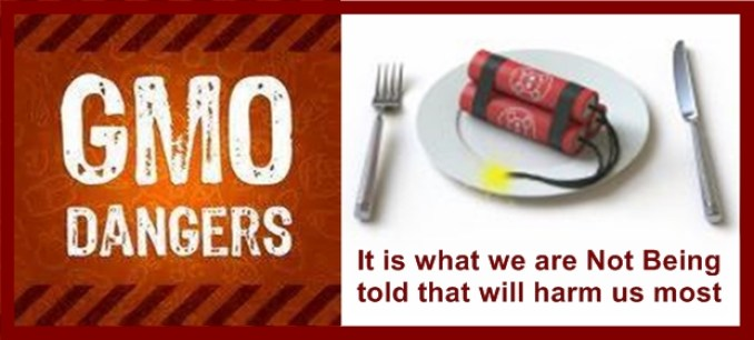 GMO-Dangers-2