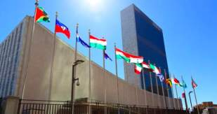 UN NY insert