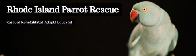 ri-parrot-rescue