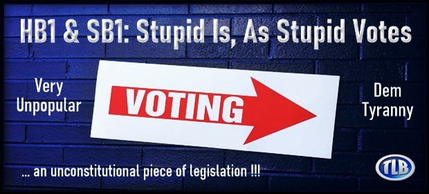 HB1 & SB1 – Stupid Is As Stupid Votes – FI 04 14 21-min