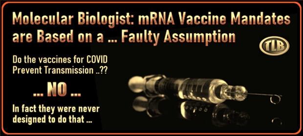 Molecular Biologist – mRNA Vaccine Mandates are Based on a – Faulty Assumption – FI 09 07 21-min