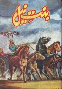 Binte Neel Novel By Aslam Rahi MA Pdf