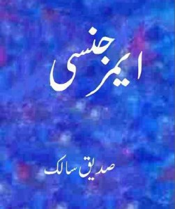 Emergency By Saddique Salik Pdf Download Free