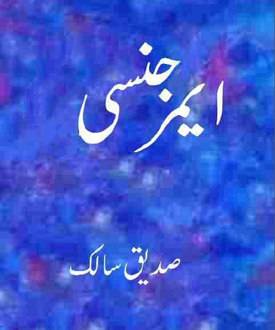 Emergency By Saddique Salik Pdf Download Free