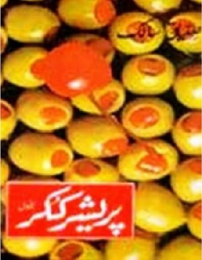 Pressure Cooker Novel By Siddique Salik Pdf