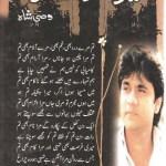 Mere Ho Kay Raho By Wasi Shah Free Pdf Download