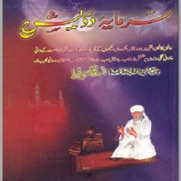 Sarmaya e Darvesh By Prof Abdullah Bhatti Pdf