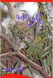 Bangroo Urdu Novel By MA Rahat Pdf