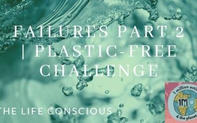 Plastic Free Challenge | More Failures + Wins