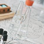 DIY geurstokjes (interieurparfum)